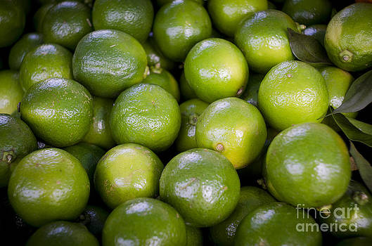 Fresh limes on a street fair in Brazil by Ricardo Lisboa