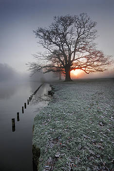 Fresh New Morning  by John Chivers