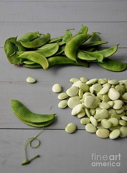 Fresh Organic Lima Beans by Maureen Cavanaugh Berry