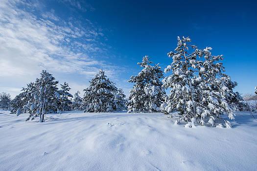 Fresh Snow by Christopher Broste