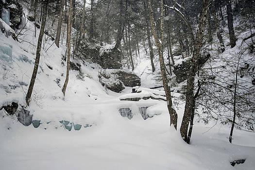 Fresh Snow Falling On Delaware Falls by Gene Walls