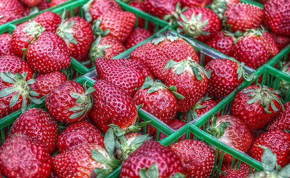 Howard Markel - Fresh Strawberries