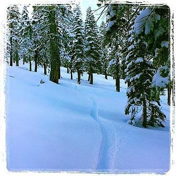 Fresh Track #northstar #laketahoe #snow by HK Moore