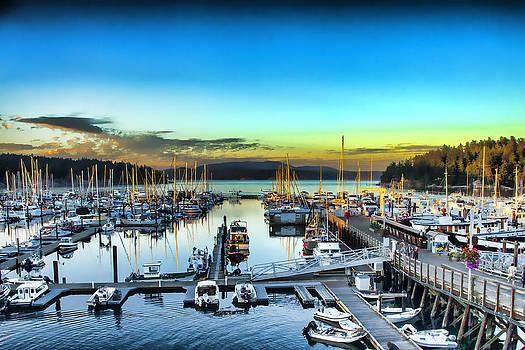 Friday Harbor by J Michael Nettik