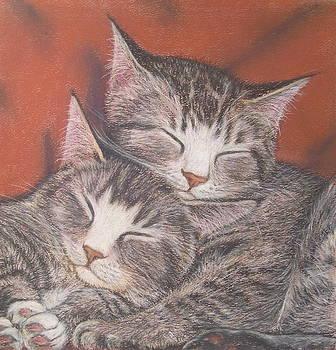 Friends by Barbara Bird
