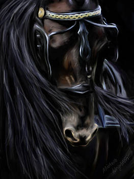 Michelle Wrighton - Friesian Spirit