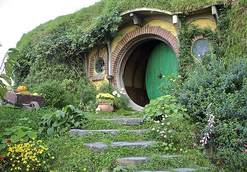 Venetia Featherstone-Witty - Frodo Baggins Lives Here