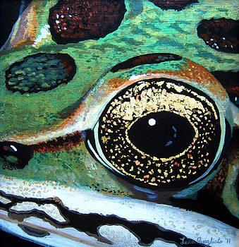 Frog Eye by Lena Quagliato