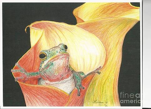 Frog in Flower by Bill Hubbard