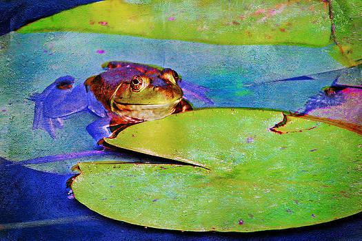 Nikolyn McDonald - Frog - On a Water Lily Pad
