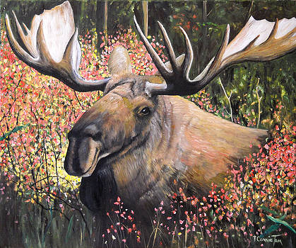 From Out of Nowhere - Moose by Connie Tom
