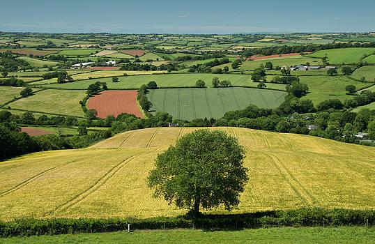 From Raddontop near Thorverton by Pete Hemington