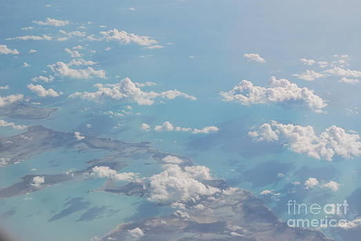 From The Air by Tracey Hampton