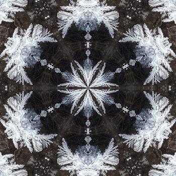 Valerie Kirkwood - Frost Flower Kaleidoscope