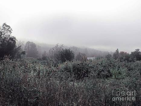 Frost on the Field by Linda Marcille