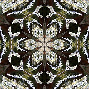 Valerie Kirkwood - Frosted Cedar Kaleidoscope