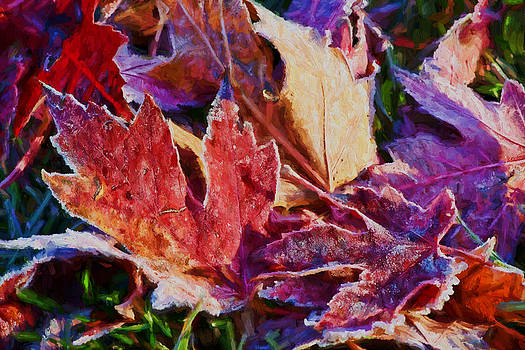 Nikolyn McDonald - Frosted Leaves #2 - Painted