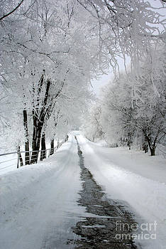 The Long Frosted Road by Tina Hailey