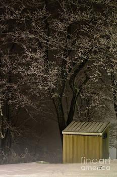 Lois Bryan - Frosty Foggy Night