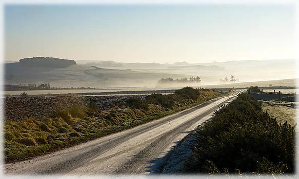 Liz  Alderdice - Frosty Morning
