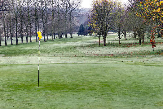 Fizzy Image - frosty morning on the golf course