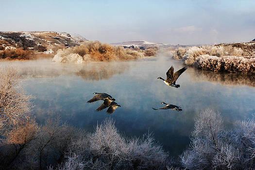 Frosty Morning on the Snake River by Lisa Kidd