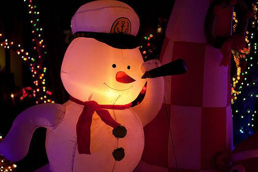 Gunter Nezhoda - Frosty the Seaman
