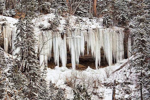 Frozen Beauty by Jana Thompson
