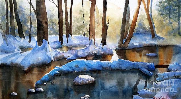 Frozen beauty by Marisa Gabetta