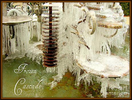 Frozen Cascade by Heidi Manly