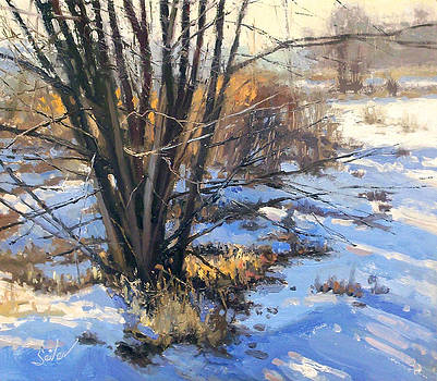 Frozen Creek Tag Alder by Larry Seiler