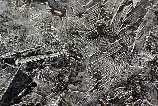 Frozen Driveway by Lindy Whiton