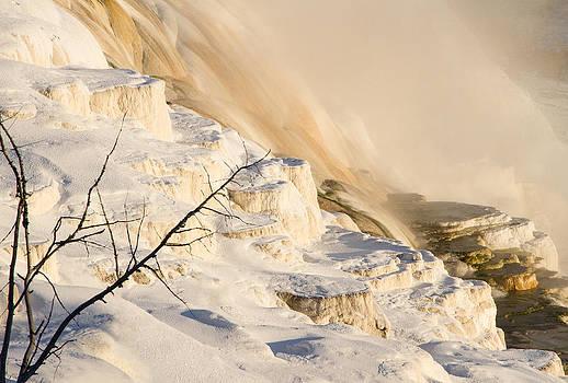 Frozen Ice Mammoth Hot Springs by Alina Marin-Bliach
