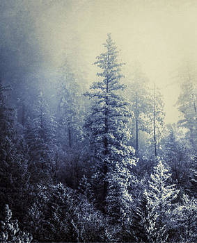 Frozen in Time by Melanie Lankford Photography