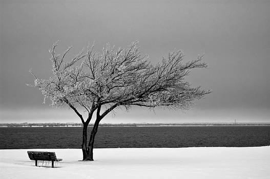 Frozen in Time by Micah McKinnon
