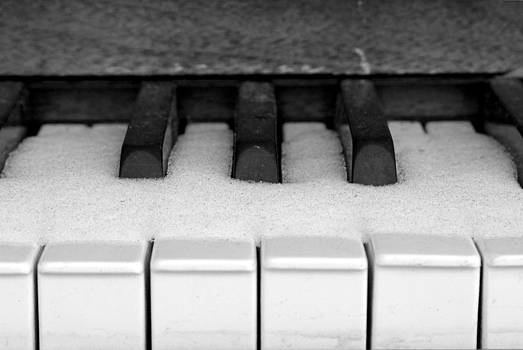 Frozen Ivories by Rob Whitney
