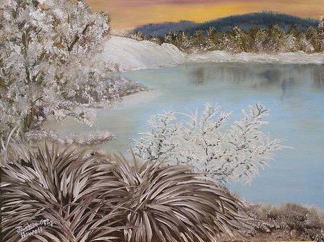 Frozen Lake by J Cheyenne Howell
