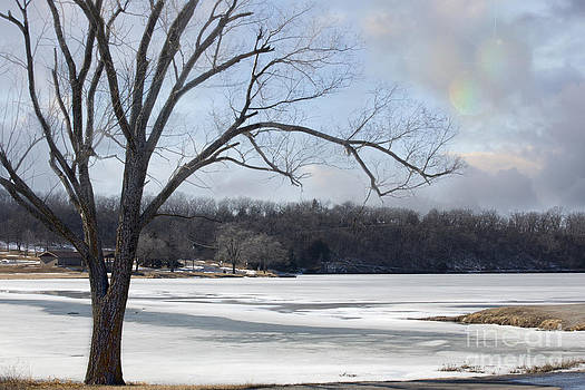 Frozen Lake by Joenne Hartley