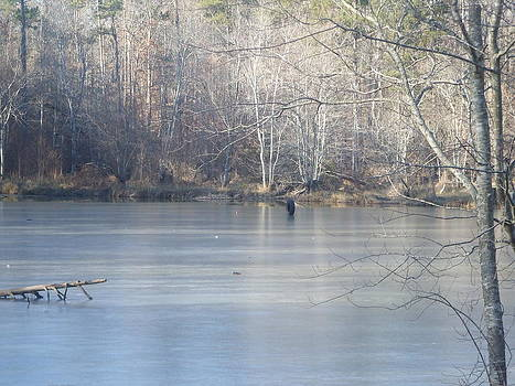 Frozen Lake with Tire  by Pamela Morrow