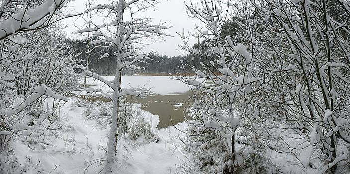 Frozen Pond 2 by Erik Tanghe