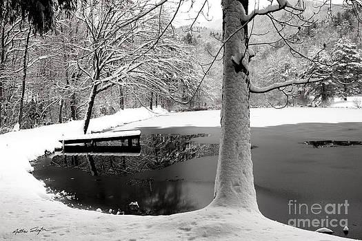 Frozen Pond 2014 by Matthew Turlington