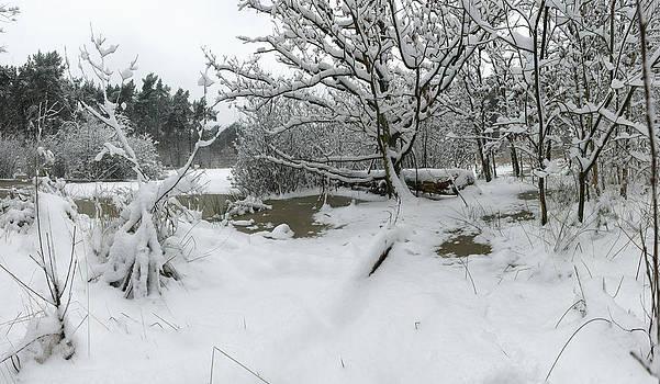 Frozen Pond by Erik Tanghe
