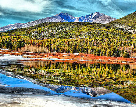 Frozen reflection on Lily Lake by Rebecca Adams