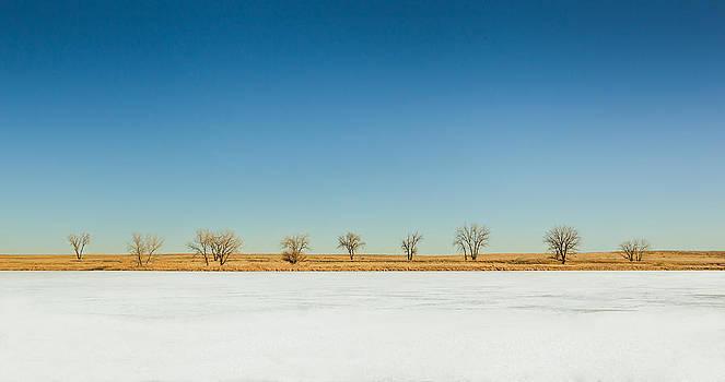 Frozen Solitude by Howard Weitzel