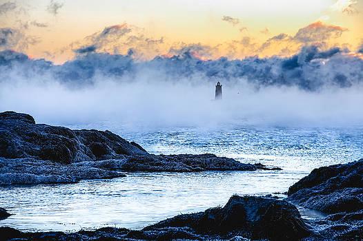 Frozen Tide by Robert Clifford
