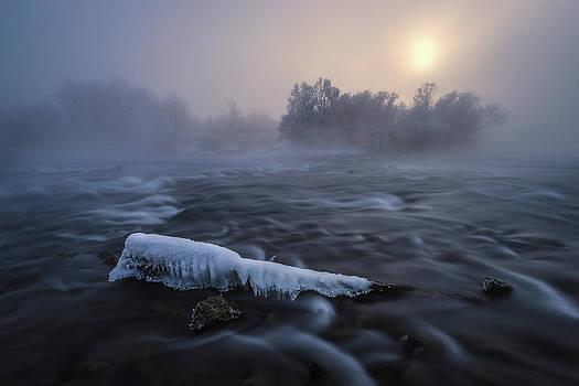 Frozen by Tom Meier