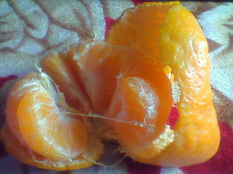 Fruit by Himani Goswami