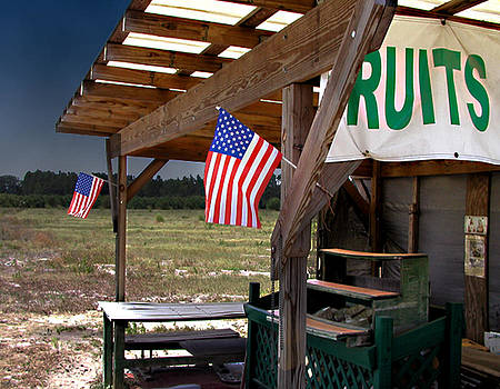 Steve Sperry - Fruit Stand USA
