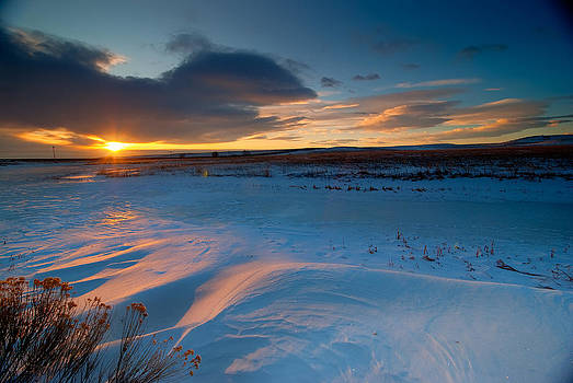 Ft Collins Snow Sparkles by Preston Broadfoot