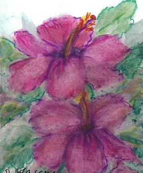 Fuchsia Hibiscus by Debbie Wassmann